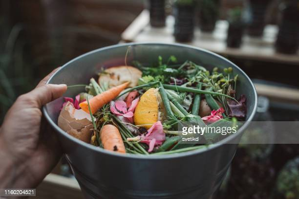 making compost from leftovers - rubbish stock pictures, royalty-free photos & images
