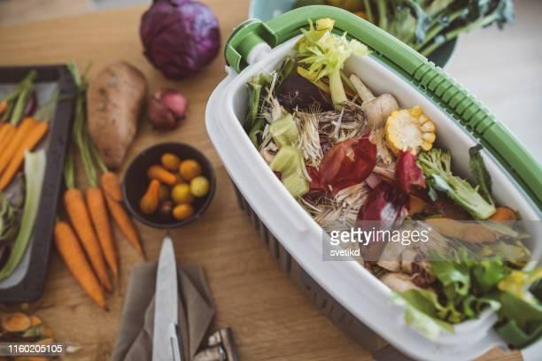 fabrication de compost à partir de restes de légumes - humus photos et images de collection