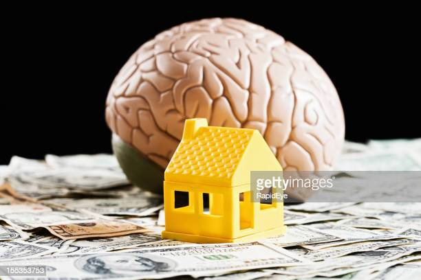 Making money from property takes brains