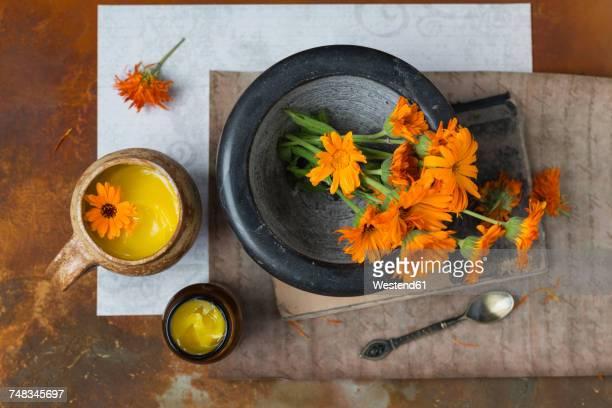 Making Pot Marigold salve