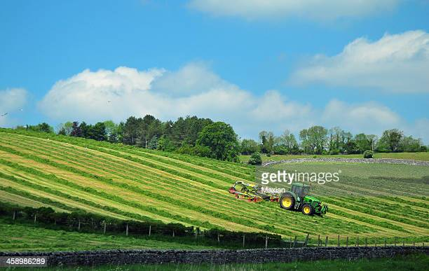 making silage - pasture stock pictures, royalty-free photos & images