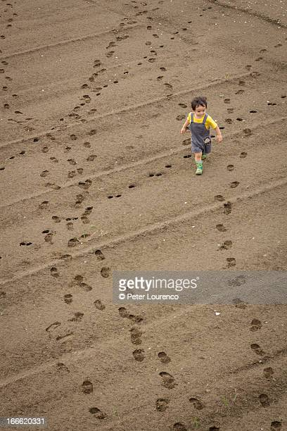 making tracks - peter lourenco stock pictures, royalty-free photos & images