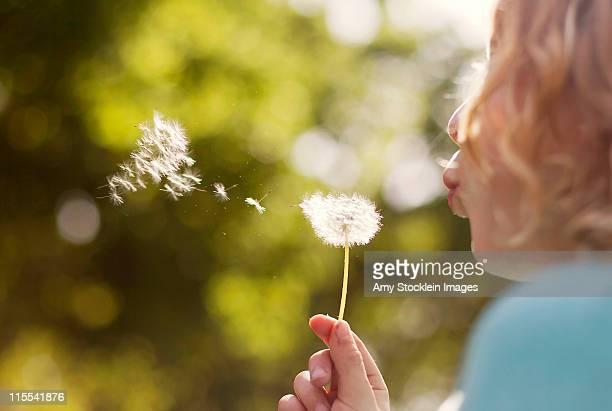Making Wish