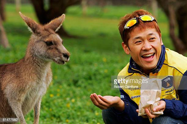 Makoto Tamada of Japan and the Fortuna Yamaha Team feeds a kangaroo at the Phillip Island Wild Life Park as they prepare for the Australian MotoGP...