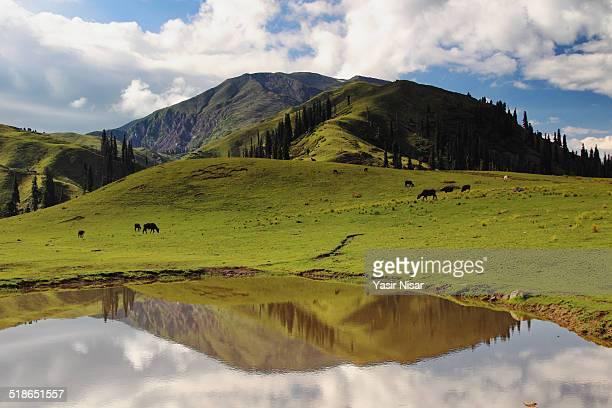 makra peak - balakot stock pictures, royalty-free photos & images