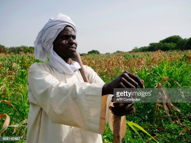 Mal Kalo farmer and fisherman poses on Midikouta Island on Lake Chad on July 22 where he returned two years after fleeing an attack of Boko Haram...