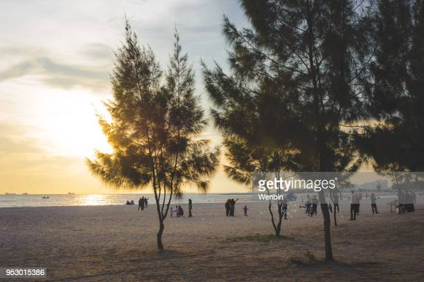 malacca strait beach sunset ,malacca - melaka state stock pictures, royalty-free photos & images