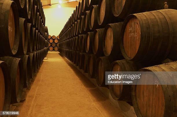 Malaga Virgen Wine Cellar Fuente de Piedra Malaga Province Andalusia Spain