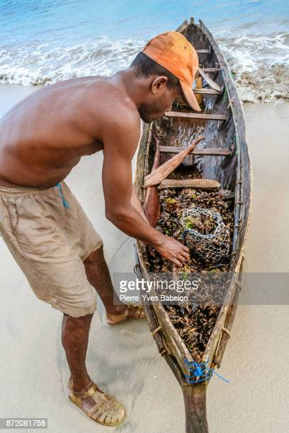 Malagasy mussel fisherman
