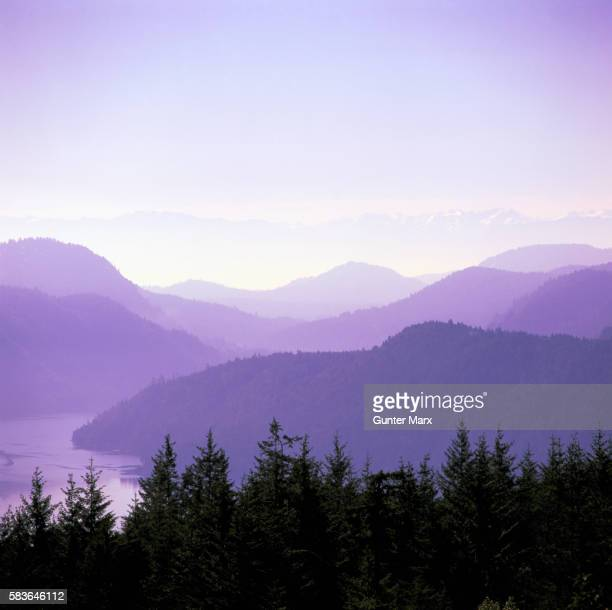 malahat summit, vancouver island, bc, canada - image stock pictures, royalty-free photos & images