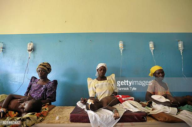 malaria - malaria parasite stock pictures, royalty-free photos & images