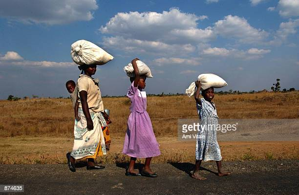 A Malawian woman and two young girls carry maize home on their heads from a small farm where they work in exchange for the food June 29 2002 in the...