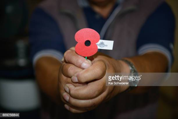 Malaya and Vietnam veteran David Rarere holds a poppy at the Royal New Zealand Returned and Services' Association Poppy Factory on March 27 2017 in...
