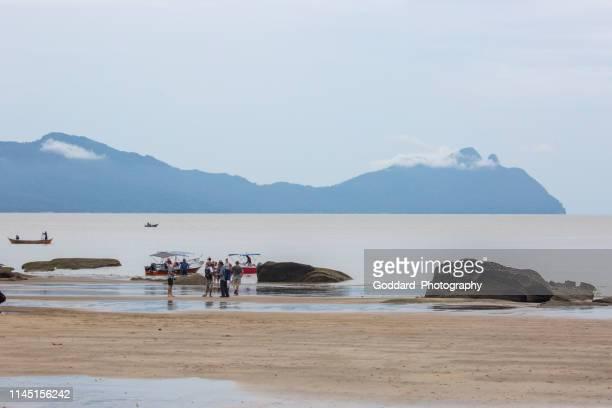 malaysia: bako national park - bako national park stock pictures, royalty-free photos & images