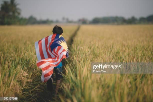 día de la independencia de malasia un niño chino asiático que lleva la bandera de malasia en el campo padi disfrutando de la luz del sol de la mañana y se siente orgulloso y feliz corriendo - malasia fotografías e imágenes de stock