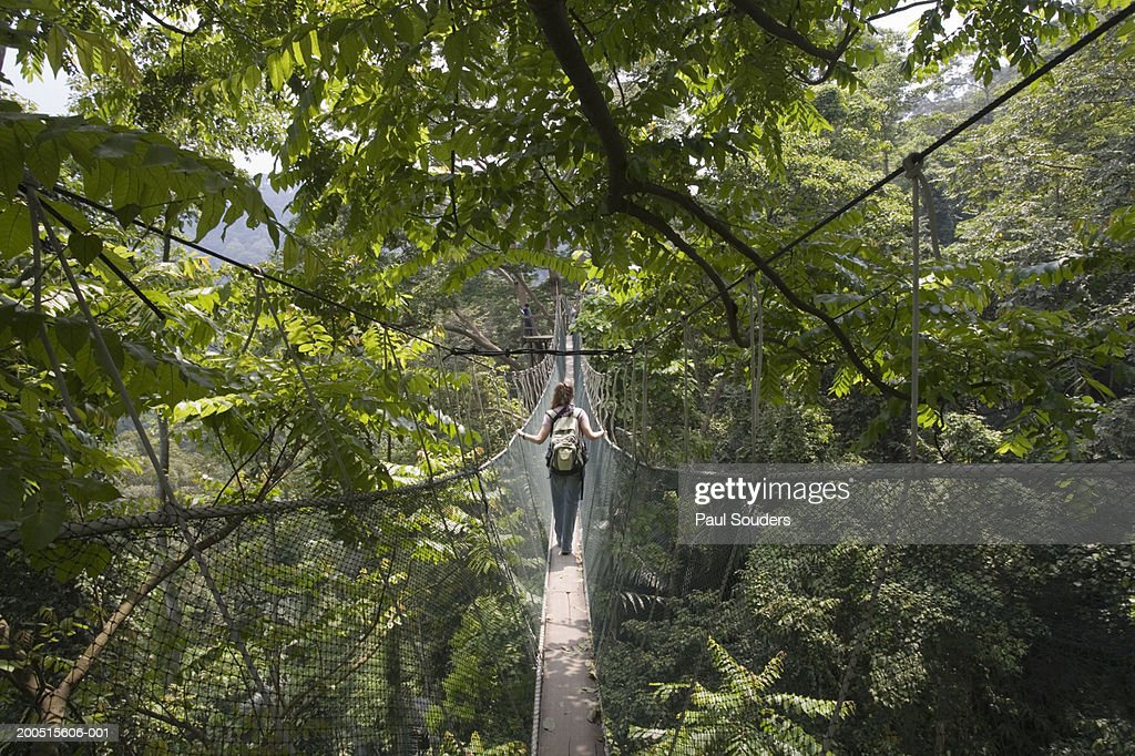 Malaysia Kuala Lumpur woman walking on Rainforest Canopy rope bridge & Forest Research Institute Of Malaysia Stock Photos and Pictures ...