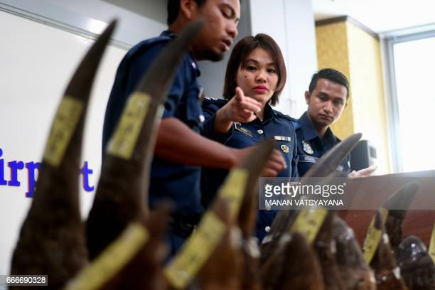 TOPSHOT Malaysian customs officials pack seized Rhino horns following a press conference at the Customs Complex in Sepang on April 10 2017...