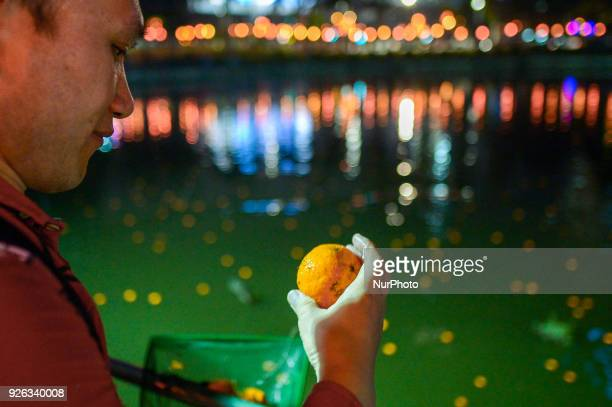 Malaysian ethnic Chinese men checks on the phone number on mandarin orange that he collects from the lake after being thrown by Chinese women marking...