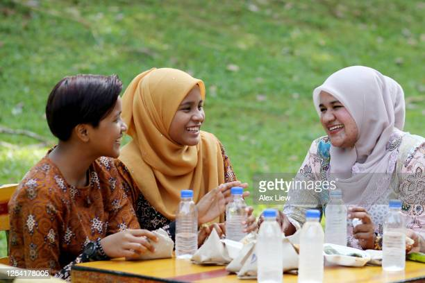 malaysian family - picnic by the park - religious dress stock pictures, royalty-free photos & images