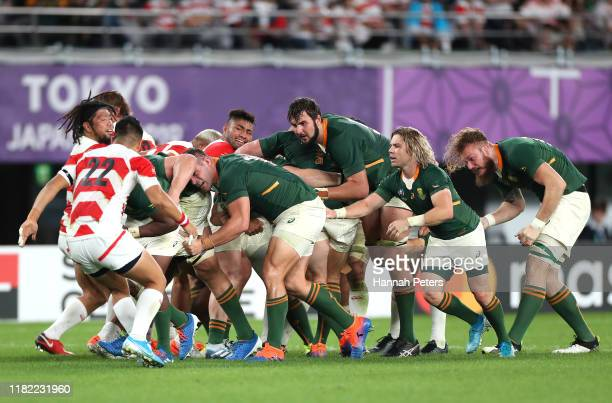 Malcolm Marx of South Africa takes drives the maul during the Rugby World Cup 2019 Quarter Final match between Japan and South Africa at the Tokyo...