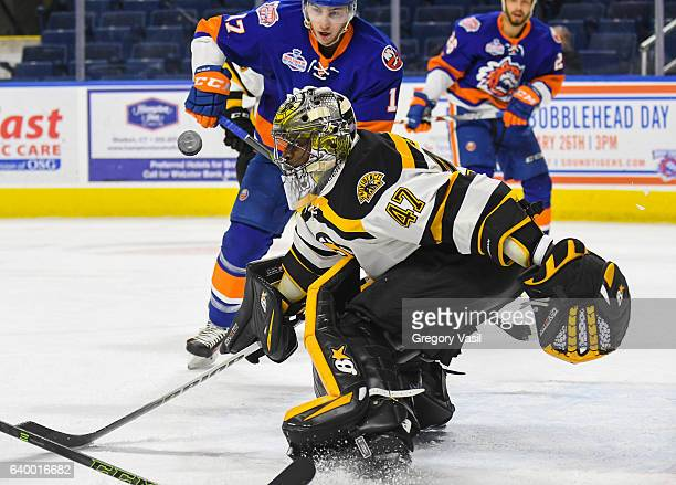 Malcolm Subban of the Providence Bruins at the Webster Bank Arena on January 25 2017 in Bridgeport Connecticut Malcolm Subban
