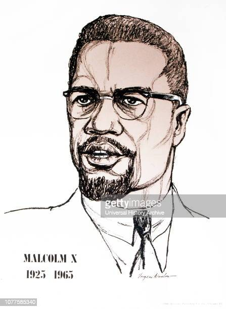 Malcolm X was an American Muslim minister and human rights activist