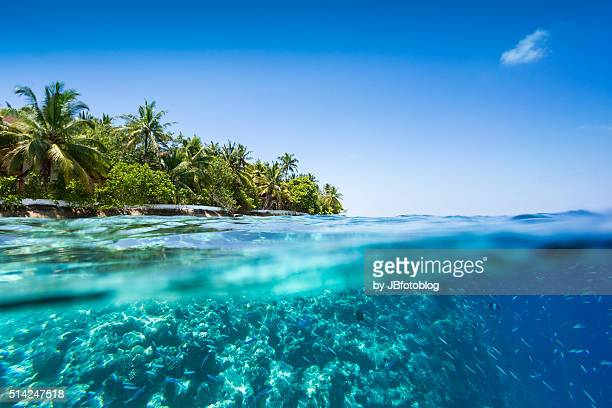 maldives half underwater, deep blue - maldives stock pictures, royalty-free photos & images