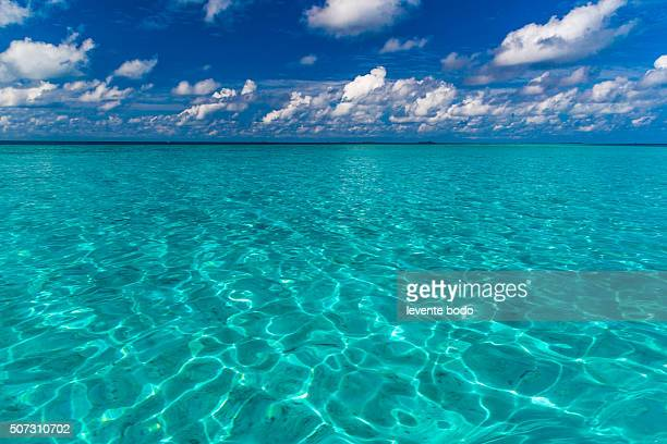 Maldives. Island in the ocean