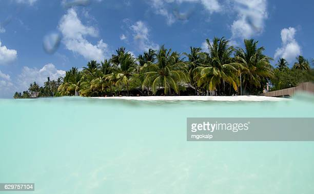 maldives island - male maldives stock pictures, royalty-free photos & images