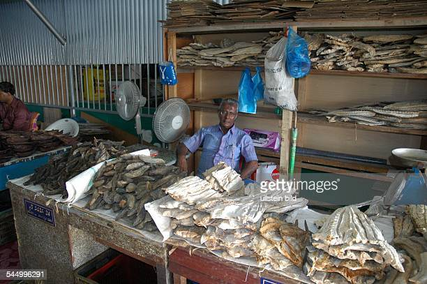 fish vendor is selling stockfish on the market