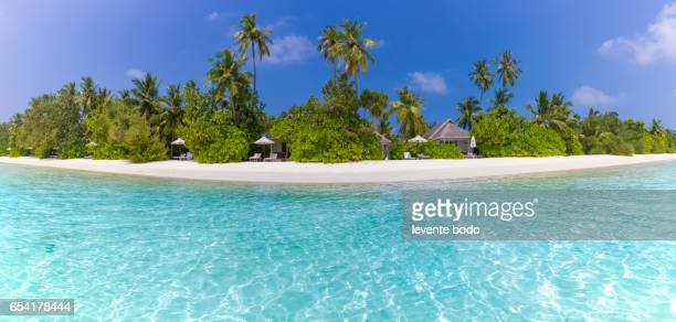 maldives paradise beach. perfect tropical island. beautiful palm trees and tropical beach. moody blue sky and blue lagoon. luxury travel summer holiday background concept. - land in sicht stock-fotos und bilder