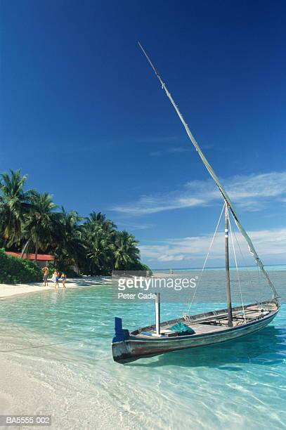 Maldives, Villivaru island, dhoni (or dorni) moored on tropical beach