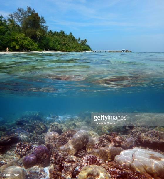 Maldivian Lagoon Of Biyadhoo Island Above and Underwater