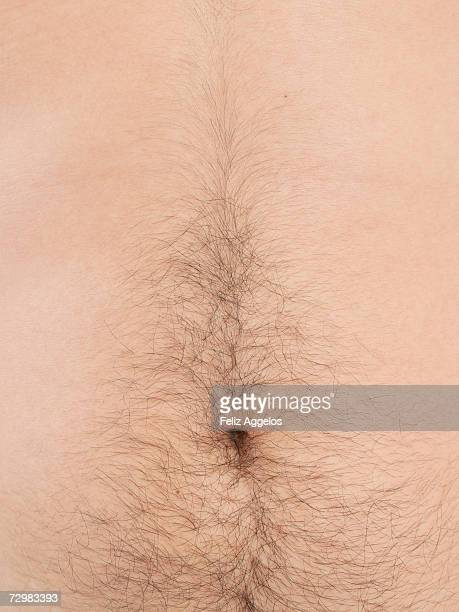 male abdomen, close-up, mid section - belly button fotografías e imágenes de stock