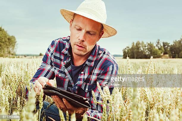 Macho agronom agricultura trabajador analizando