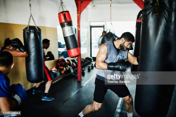 male and female boxers working out on heavy bags during training session in boxing gym - 男らしさ ストックフォトと画像