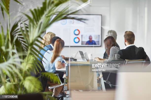 male and female executive team video conferencing with ceo - candid stock pictures, royalty-free photos & images