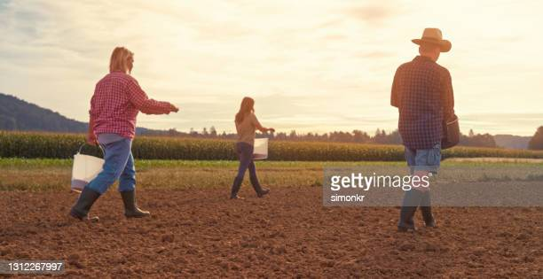 male and female farmers tossing seeds in farm - white boot stock pictures, royalty-free photos & images