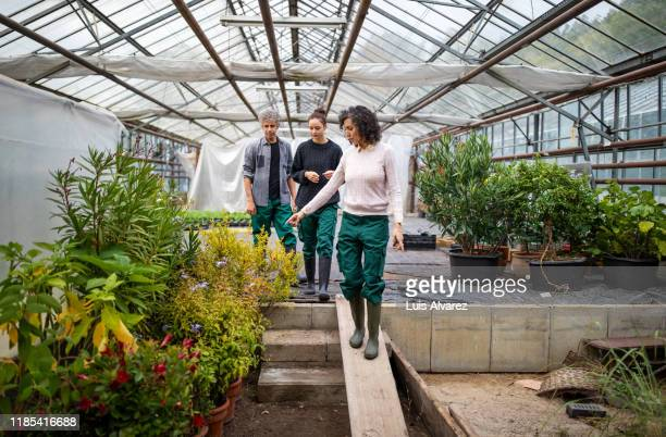 male and female gardeners working in a garden center - botanist stock pictures, royalty-free photos & images