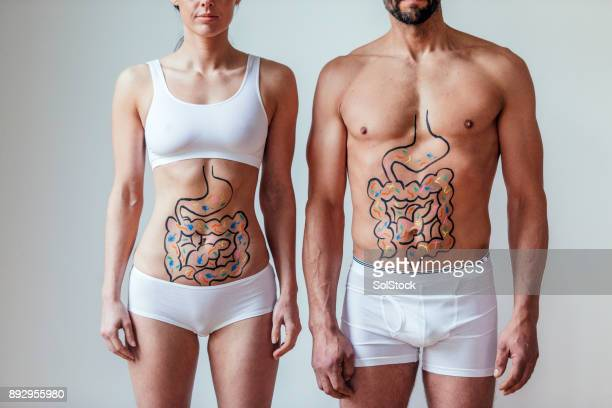 male and female intestinal health concept - male torso stock photos and pictures