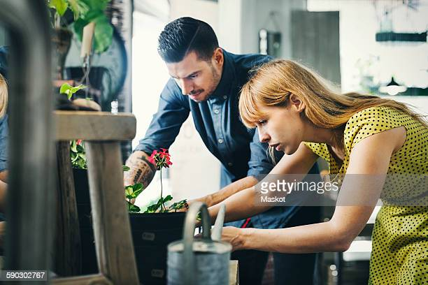 Male and female owners working together in plant shop