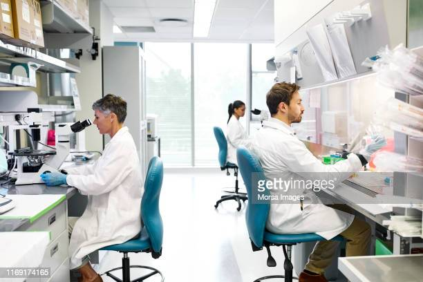 male and female scientists working in laboratory - place of research stock pictures, royalty-free photos & images
