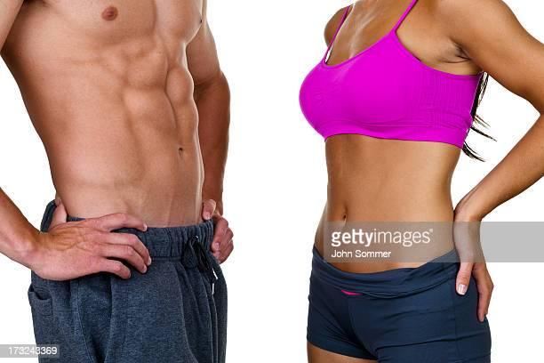 雄および雌の胴体