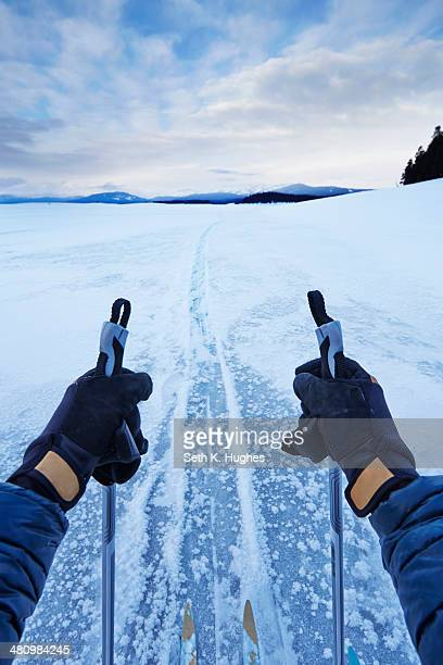 Male arms holding skipoles in vast landscape, Colter Bay, Wyoming, USA