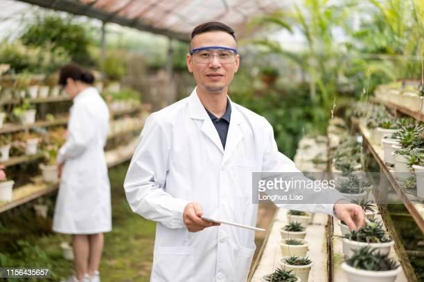a male asian scientist in a greenhouse - biologo foto e immagini stock