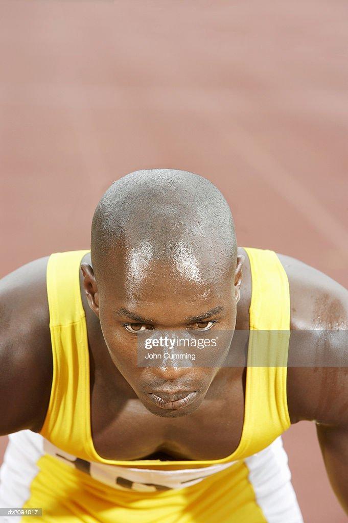 Male Athlete Crouching on Starting Blocks on a Running Track : Stock Photo