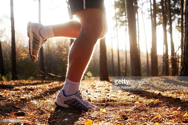 Male athlete jogging in woods.