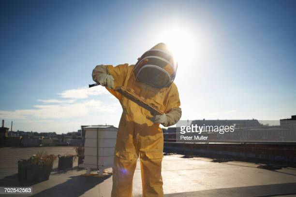 Male beekeeper inspecting honeycomb tray on city rooftop