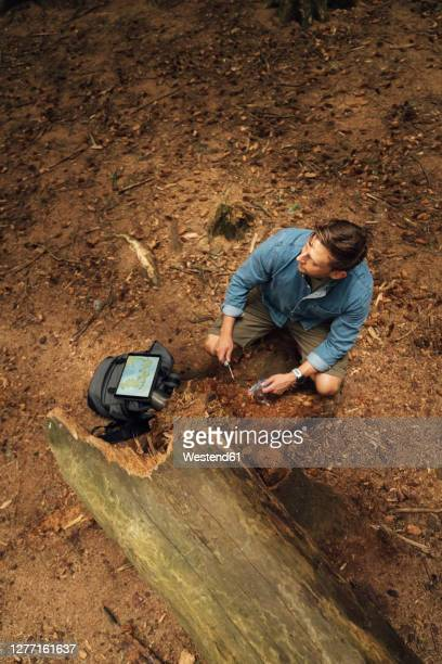 male biologist taking dirt samples on land in forest - environment stock pictures, royalty-free photos & images