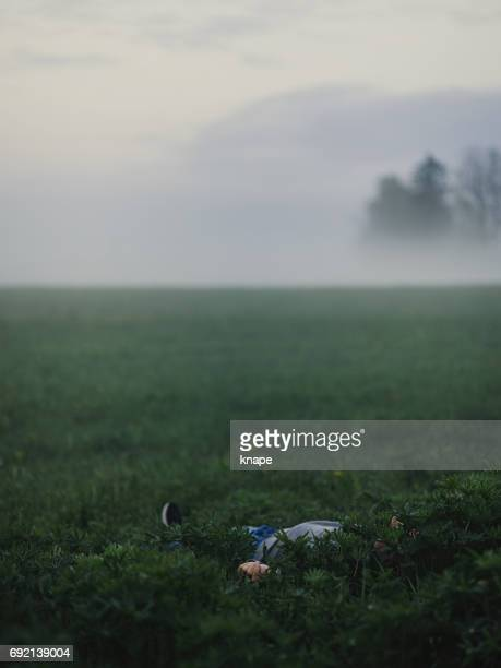 male body lying in foggy field magical and beautiful nature - dead body stock pictures, royalty-free photos & images